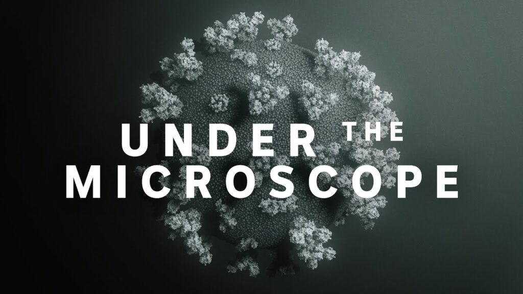 Coronavirus: Under the microscope | ABC News