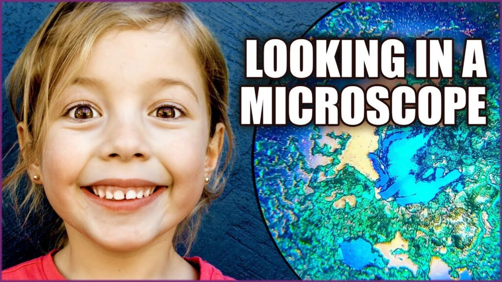 Microscope For Kids – Fun with Science