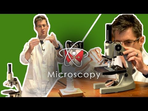 Microscopy – How to use a microscope – GCSE Science Required Practical